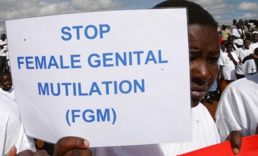 Integriamoci Insieme: gli appuntamenti sulle MGF