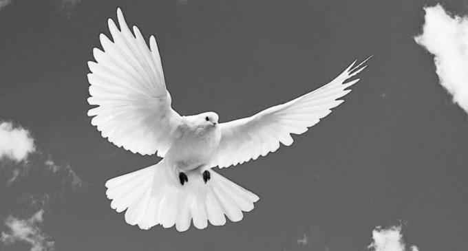 Una preghiera a tre voci per la pace